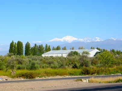 Good morning, Mendoza!